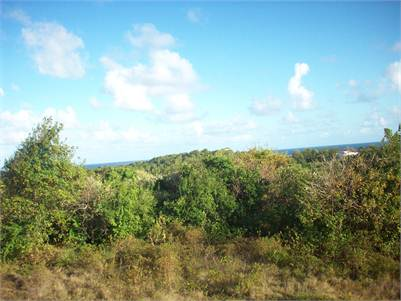 Exclusive Land for Sale in Canelles Vieux Fort with Sea View