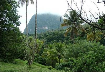 2 Acres of Country Side Land for Sale in Soufriere