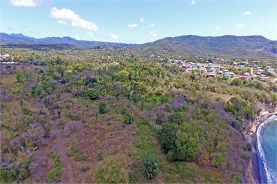 Prime Development Land for Sale in Laborie - Choiseul 12 Acres