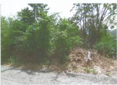 Land for Sale at Grand Riviere Gros Islet – 6876 sq ft
