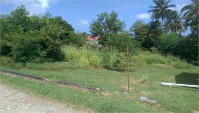 Flat Land for Sale in Choiseul St Lucia 13, 565 Sq. Ft.